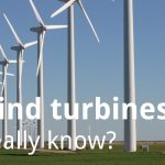 ECOS 38 (2): Bats and wind turbines – what do we really know?
