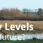 ECOS 38 (2): Pevensey Levels – a booming future?