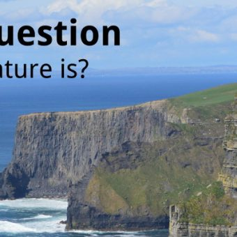 ECOS 38 (2): The Nature question