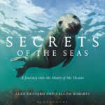 ECOS 38 (2): Book Review: SECRETS OF THE SEA