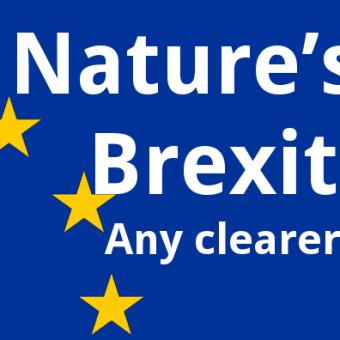 ECOS 38 (3): Nature's Brexit