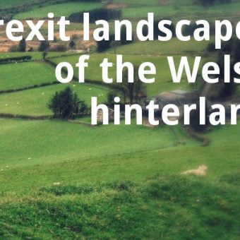 ECOS 38 (3): Brexit landscapes of the Welsh hinterland