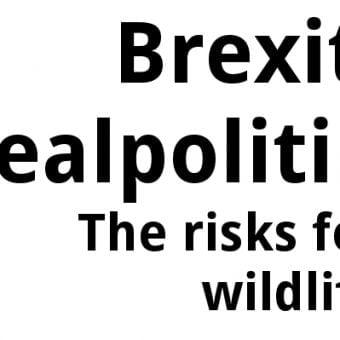 ECOS 38 (3): Brexit realpolitik