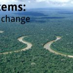 Novel ecosystems: adapting to rapid change