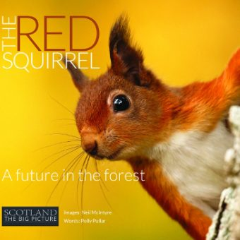 ECOS 38 (5): Book Reviews: The Red Squirrel