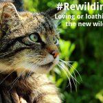 ECOS 38 (6): #Rewilding