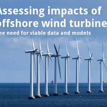 ECOS 38 (6): Assessing impacts of offshore wind turbines