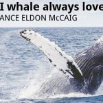 ECOS 39 (4): Undergraduate winner: And I whale always love you