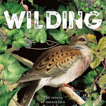 ECOS 39(5): Book Review: WILDING