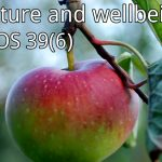 ECOS 39(6): Editorial: Nature and wellbeing