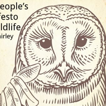 ECOS 39(6): The people's manifesto for wildlife – solid ideas or flaky ideals?