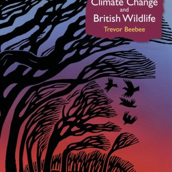 ECOS 40(1): Book Review: Climate Change and British Wildlife