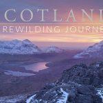 ECOS 40(5): Book Review: Scotland - A Rewilding Journey